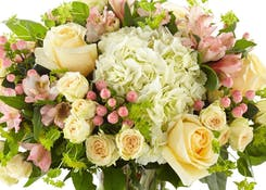Birthday for Her