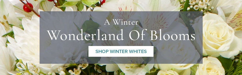 Warm Up The New Year With Beautiful Winter Flowers from Campbell's Flowers and Greenhouses