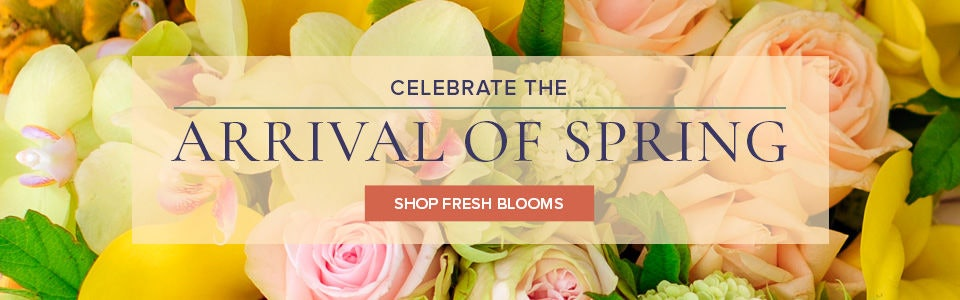 Celebrate Spring with flowers delivered by Campbell's Flowers throughout Pueblo or nationwide.