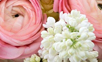 Pueblo Florists Flowers Pueblo Co Campbell S Flowers Greenhouses