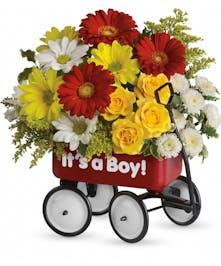 Baby's Wow Wagon