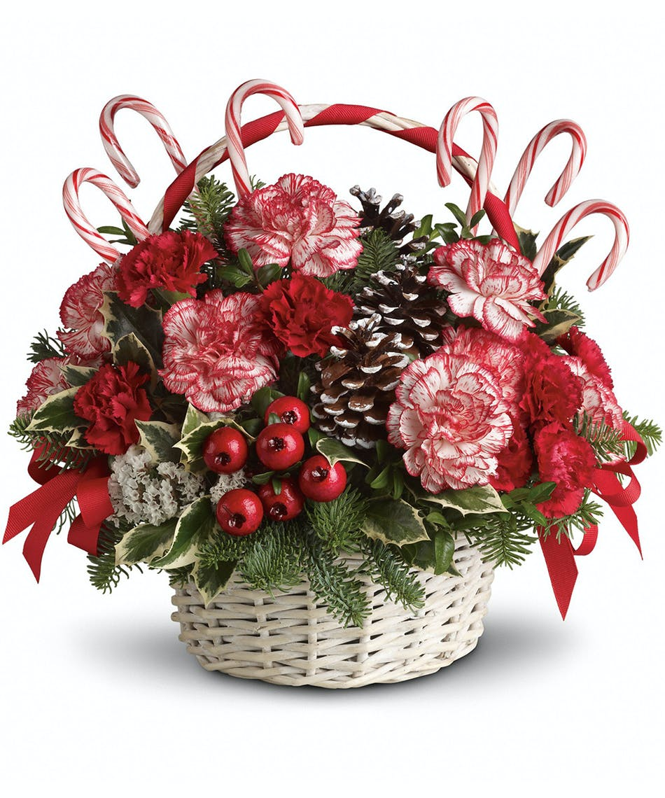 Candy Cane Christmas - Florists Pueblo (CO) Same-day Delivery ...