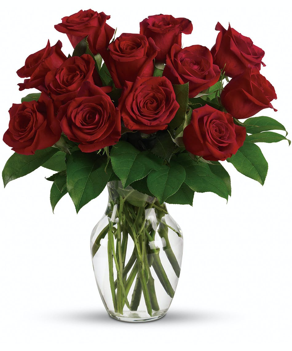 Enduring passion 12 18 or 24 florists pueblo co same day enduring passion 12 18 or 24 florists pueblo co same day delivery campbells flowers greenhouse izmirmasajfo