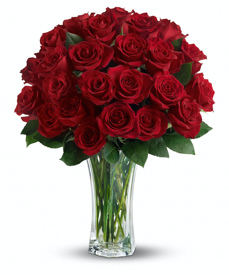 Love and devotion long stemmed red roses florists pueblo co love and devotion long stemmed red roses florists pueblo co same day delivery campbells flowers greenhouse izmirmasajfo