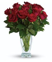 Rose Classique - Dozen Red Roses