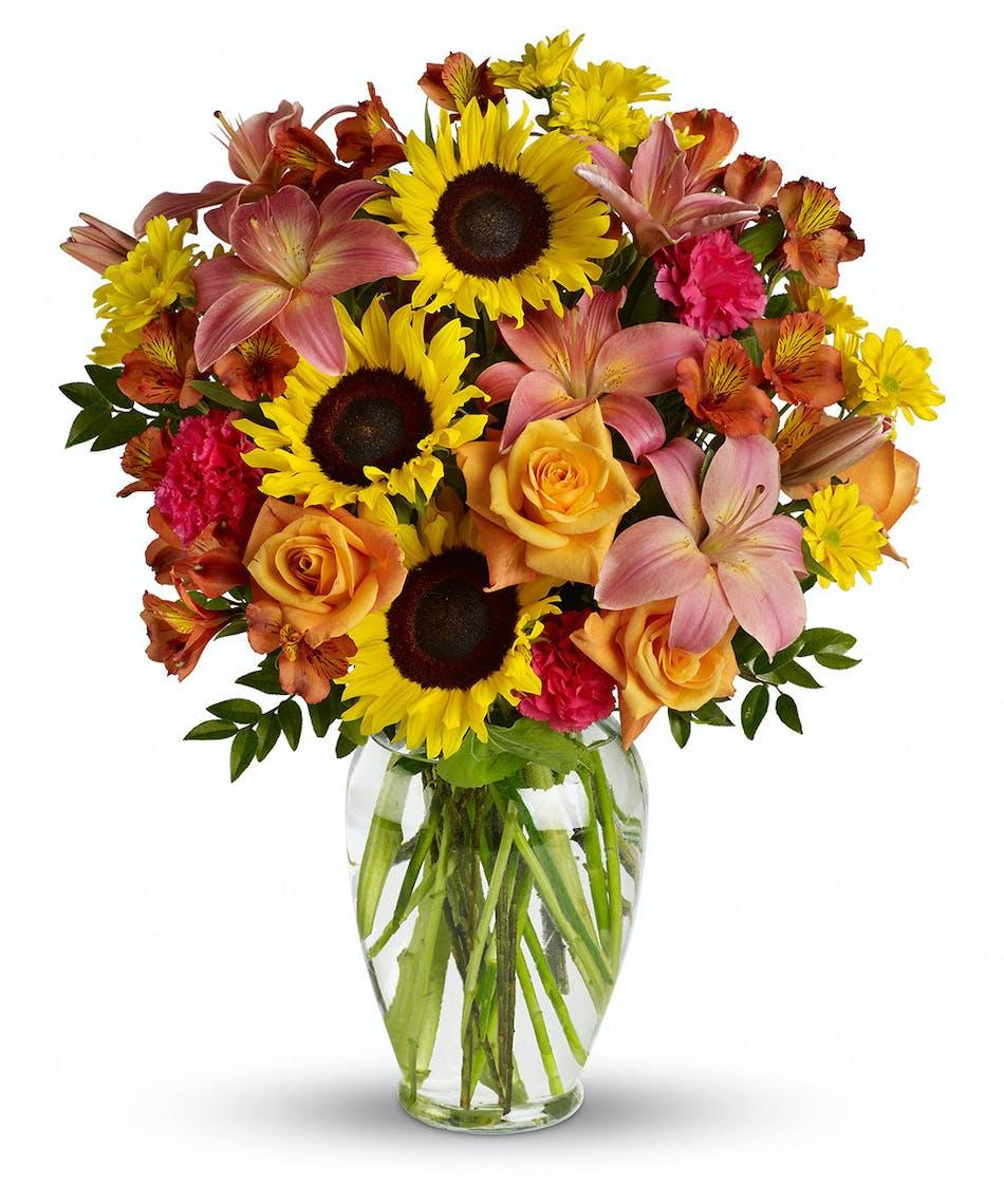 In Praise Of Bees Campbells Flowers