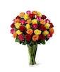 Bright Spark Rose Bouquet - Exquisite