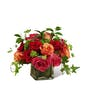 The Lush Life Rose Bouquet - Deluxe