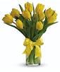 10 Yellow Tulips
