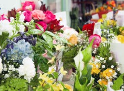 A wide range of colorful flowers and arrangements awaiting selection